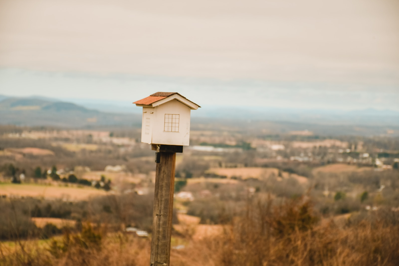white and brown wooden birdhouse